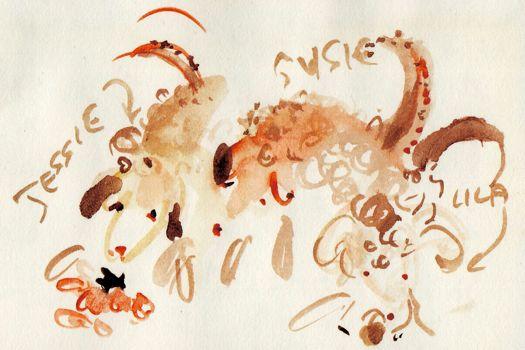 Truffle hounds, by Elisabeth Luard