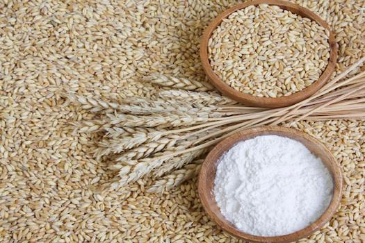 pandesal jackfruit seed flour as substitute